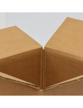 Kartonska kutija 420x240x125 mm
